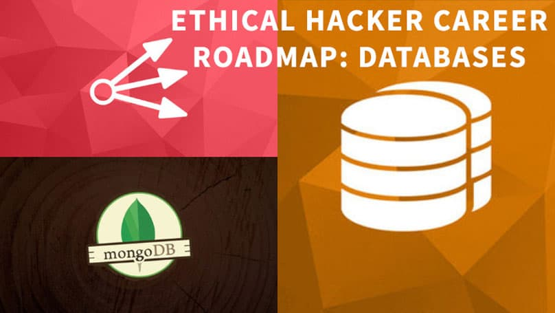 Ethical Hacker Career Roadmap: Databases